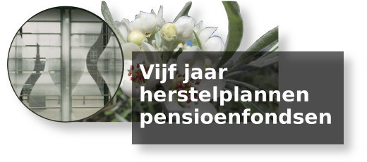 HerstelplannenIMG_1106-520x230sh.jpg