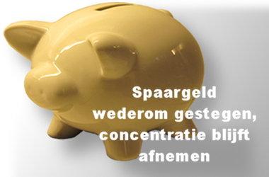 spaargeld-pig-IMG_0625-SH380x250.jpg
